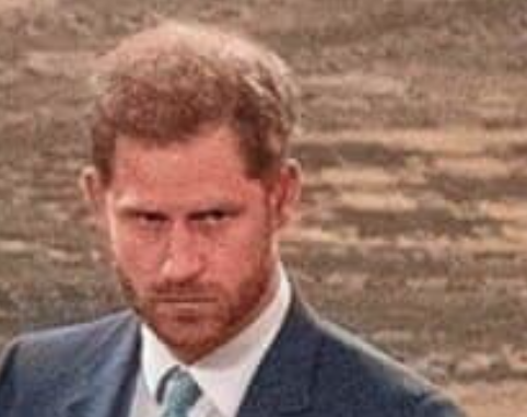 Harry Markle ~ Traditional British Pro-monarchy  Satire!
